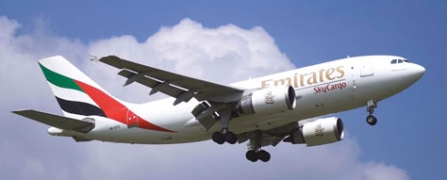 Aircraft Airbus A310-300F  Manufacturer Airbus  Price